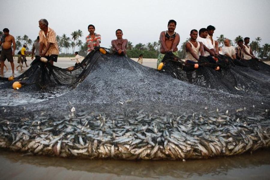 fisher-men-n-goa