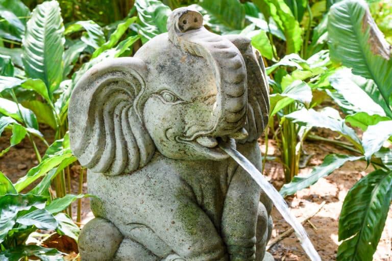 water statues beleza